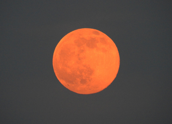 strawberrymoon1.jpg